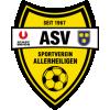 USV Allerheiligen - Logo