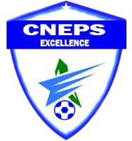 CNEPS Excellence - Logo