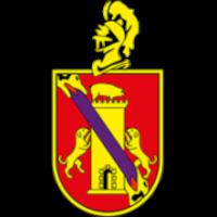Ел Палмар ФК - Logo