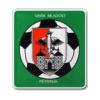 Mladost Petrinja - Logo