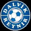 Dalvik/Reynir - Logo