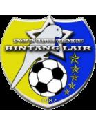 Бинтанг Лайр - Logo