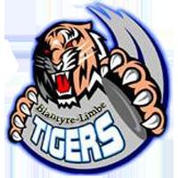 Azam Tigers - Logo