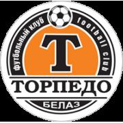 Торпедо Жодино Резерви - Logo