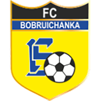 Bobruichanka (W) - Logo