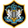 Сеул Юнайтед - Logo