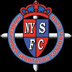 Nyiregyhaza - Logo