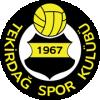 Текирдагспор - Logo