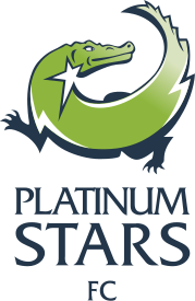 Платинум Старс - Logo