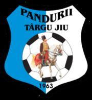 Pandurii Targu Jiu - Logo
