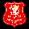 Newtown AFC - Logo
