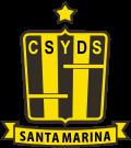 Ramón Santamarina - Logo