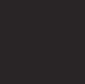 Torpedo Kutaisi - Logo
