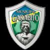 Puma Generaleña - Logo