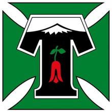 Депортес Темуко - Logo