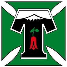Deportes Temuco - Logo