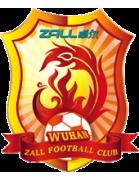 Вухан Зал - Logo