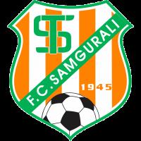 Samgurali Tskh. - Logo