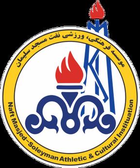 Naft M. Soleyman - Logo