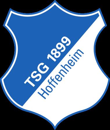 Хофенхайм - Logo