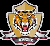 Tigres FC (COL) - Logo