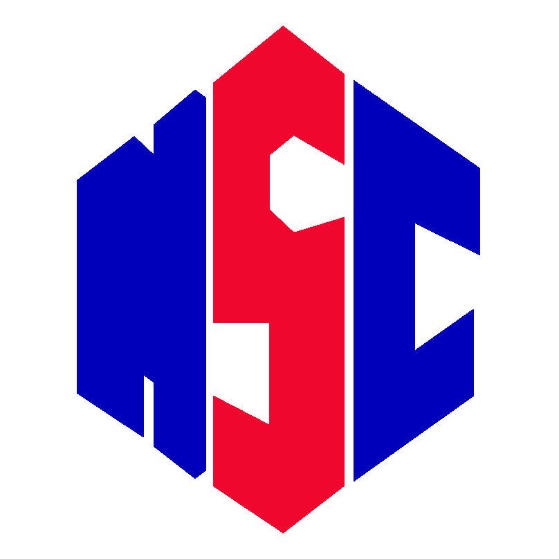 Нзоя Юнайтед - Logo