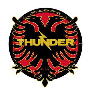 Данденонг Тъндър - Logo