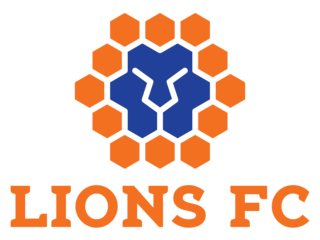 Куинсланд Лайънс - Logo
