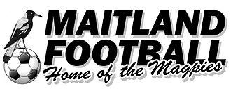 Maitland FC - Logo