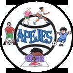 АПЕДЖЕС Академи - Logo