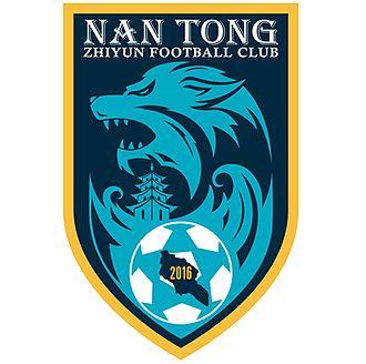 Нантонг Жиюн - Logo