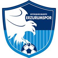 Эрзурум - Logo
