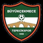 Tepecikspor AS - Logo