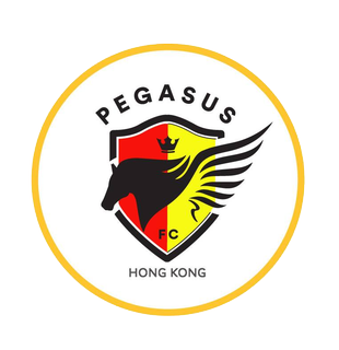 Пегасус - Logo