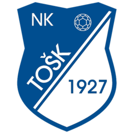TOSK Tesanj - Logo