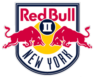 Ню Йорк Ред Булс 2 - Logo