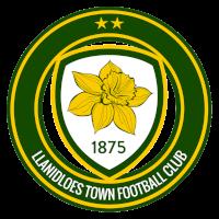 Llanidloes Town - Logo