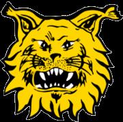 Ilves 2 - Logo